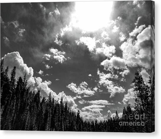 A New Day, Black And White Canvas Print