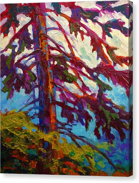 Mountain West Canvas Print - Forest Elder by Marion Rose