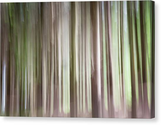 Forest Fantasy 3 Canvas Print