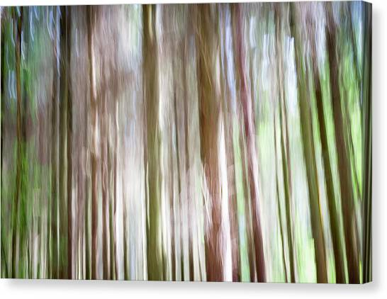 Forest Fantasy 4 Canvas Print