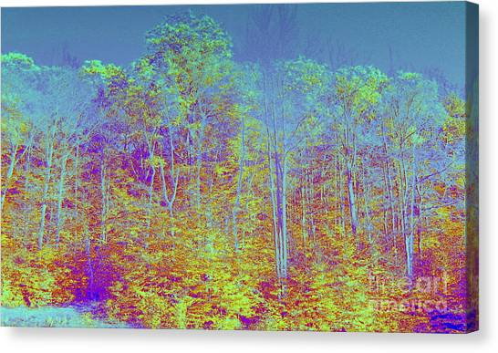 Forest Fog Canvas Print