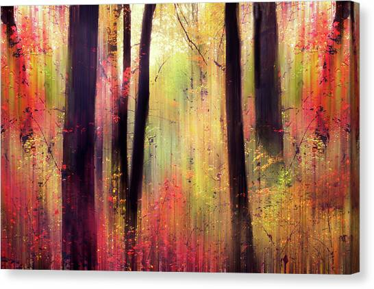 Canvas Print featuring the photograph Forest Frolic by Jessica Jenney
