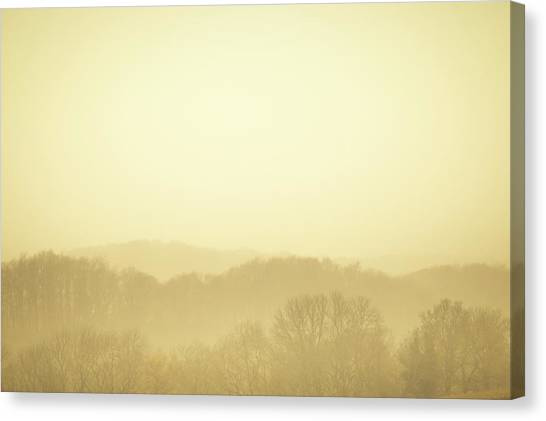 Canvas Print - Forest In The Mist 01 by Richard Nixon