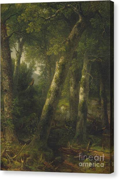 Canvas Print - Forest In The Morning Light by Asher Brown Durand