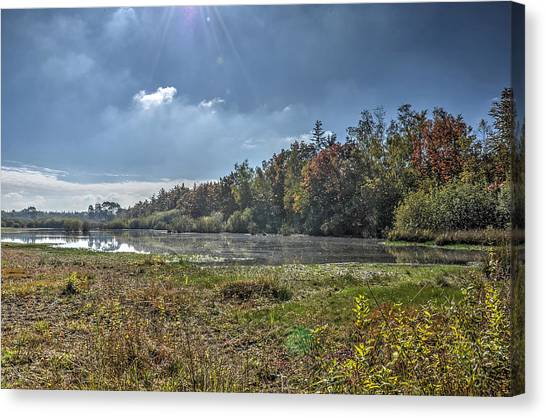 Forest Lake In Autumn Canvas Print