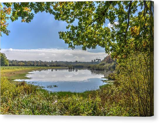 Forest Lake Through The Trees Canvas Print
