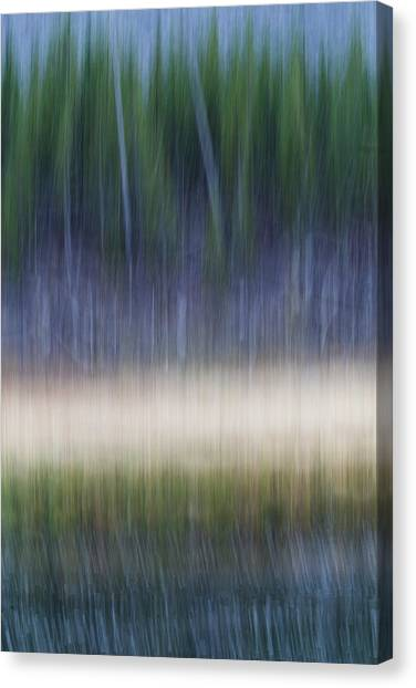 Forest Meets Lake Canvas Print