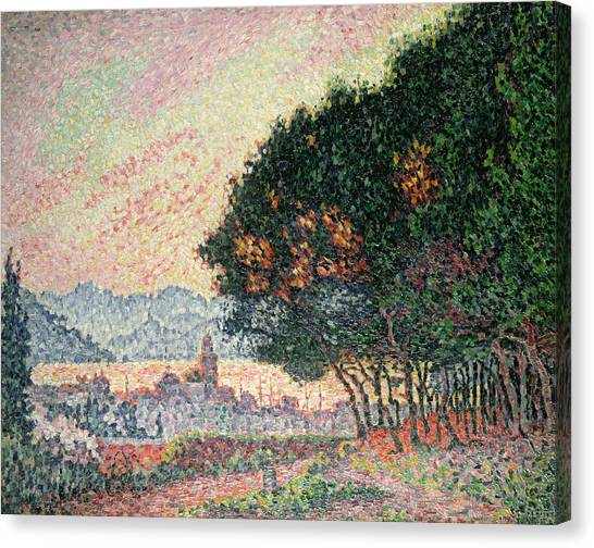 Pointillism Canvas Print - Forest Near St Tropez by Paul Signac