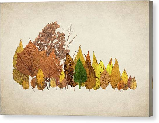 Decay Canvas Print - Forest Of Autumn Leaves I by Tom Mc Nemar