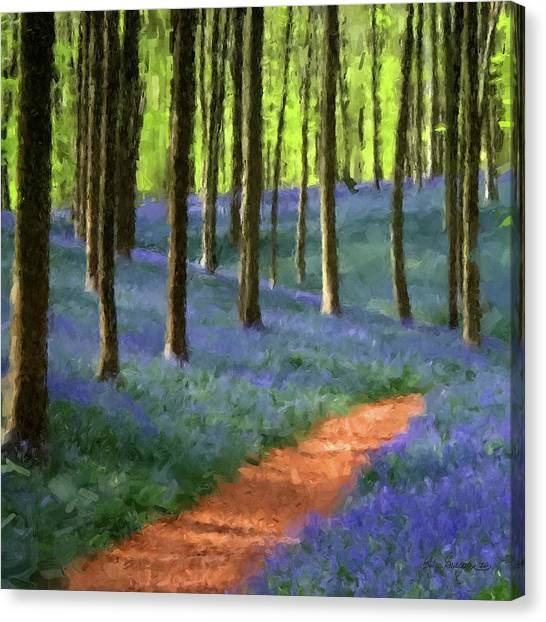 Forest Paths Canvas Print - Forest Path by Gary Grayson