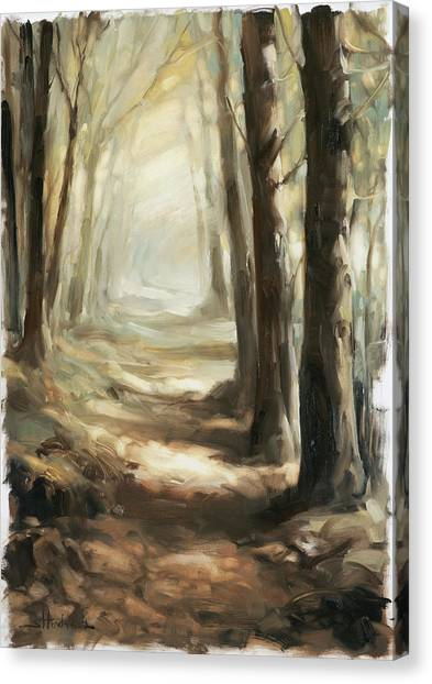 Forest Paths Canvas Print - Forest Path by Steve Henderson
