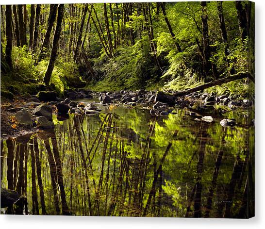 Wilson River Canvas Print - Forest Reflections by Leland D Howard