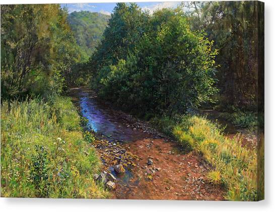 Forest River Summer Day Canvas Print
