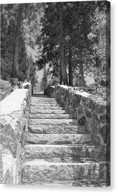 Forest Stairway Canvas Print