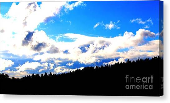 Canvas Print - Forest Storm by Nick Gustafson