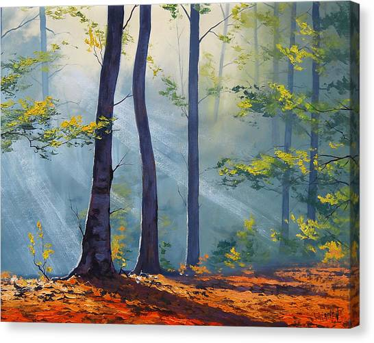 Red Maple Tree Canvas Print - Forest Sunrays by Graham Gercken