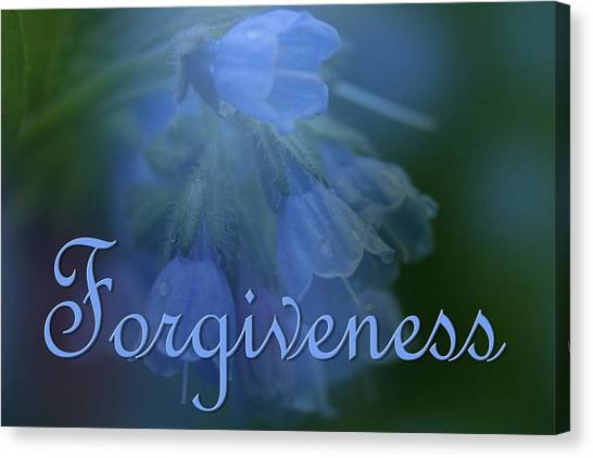 Forgiveness Blue Bells Canvas Print