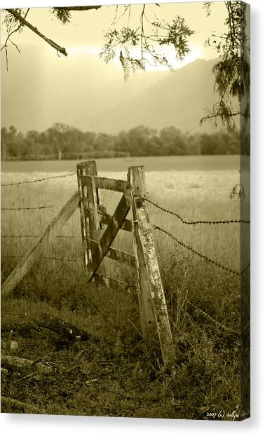 Rural Landscapes Canvas Print - Forgotten Fields by Holly Kempe