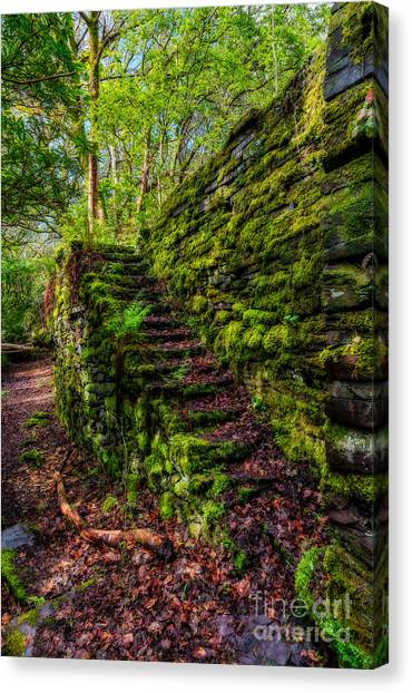 Stone Steps Canvas Print - Forgotten Steps by Adrian Evans