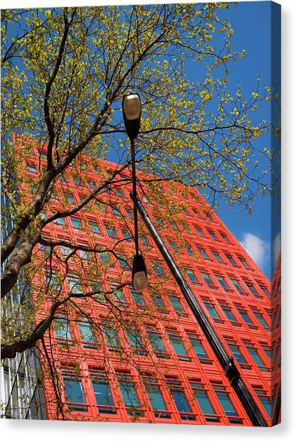 Canvas Print featuring the photograph Formal Google by Stewart Marsden