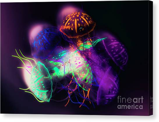 Aquariums Canvas Print - Forms And Merger by Jorgo Photography - Wall Art Gallery