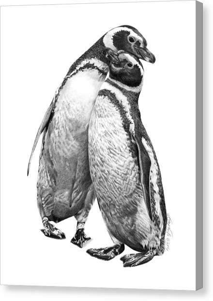 Forrest And Jenny The Penguins Canvas Print