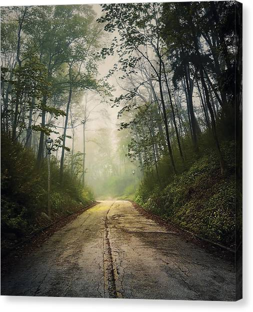 Street Lamp Canvas Print - Forsaken Road by Scott Norris