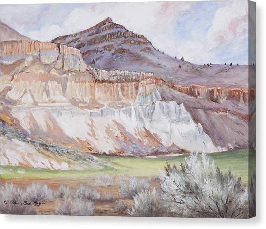 Fossil Beds  Canvas Print