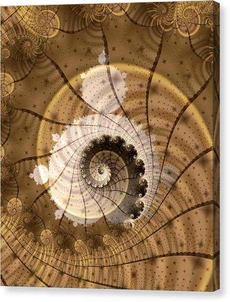 Apophysis Canvas Print - Fossil by David April