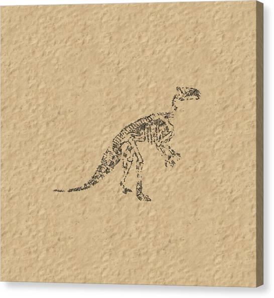 Fossils Of A Dinosaur Canvas Print
