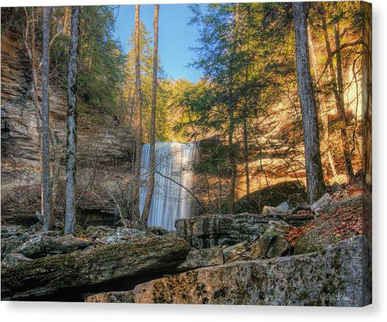 Lower Greeter Falls 1 Canvas Print by Dale Wilson