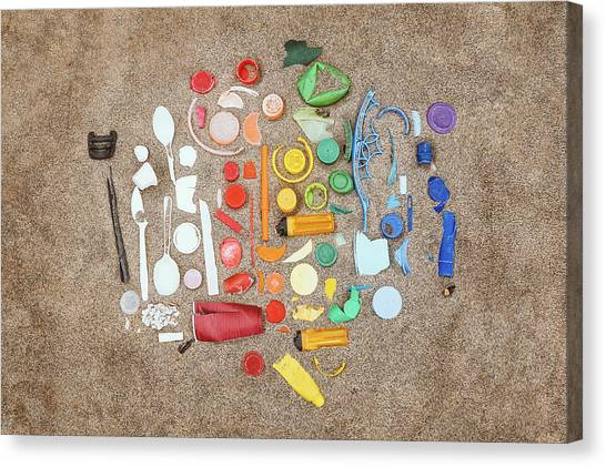 Rainbow Canvas Print - Found Items Rainbow by Scott Norris
