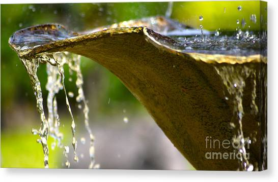 Fountain Bowl Canvas Print
