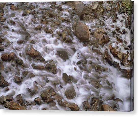 Fountain Creek Up Close  Canvas Print