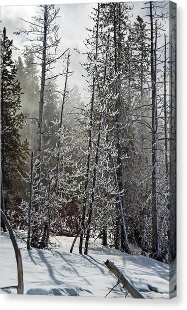 Fountain Paint Pots Shrouded In Snow And Ice Canvas Print