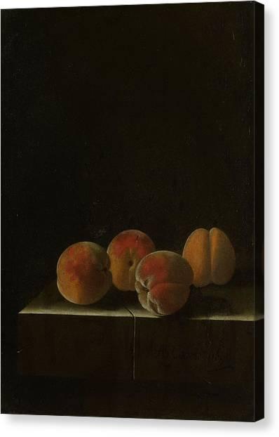 Four Apricots On A Stone Plinth Canvas Print