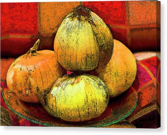Four Onions  Canvas Print