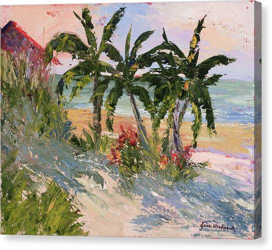 Four Palms Canvas Print by Jane Woodward