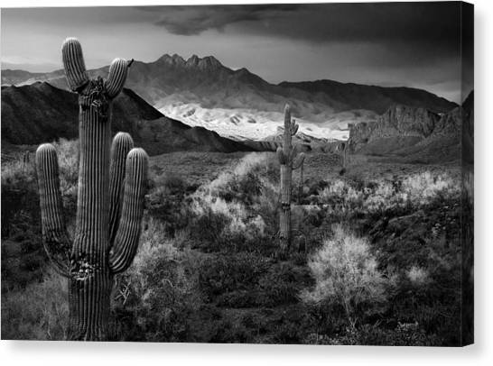 Sonoran Desert Canvas Print - Four Peaks Az Sunset by Dave Dilli