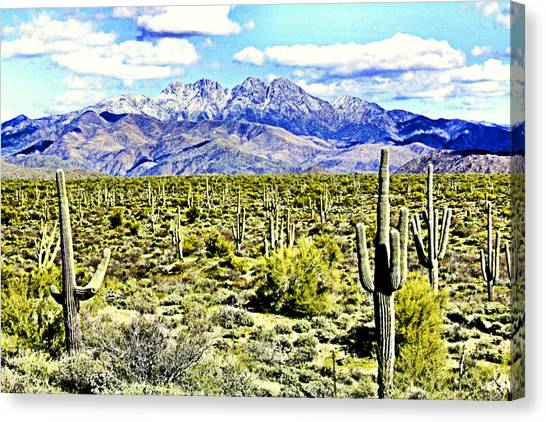 Four Peaks Canvas Print by Sharon Broucek