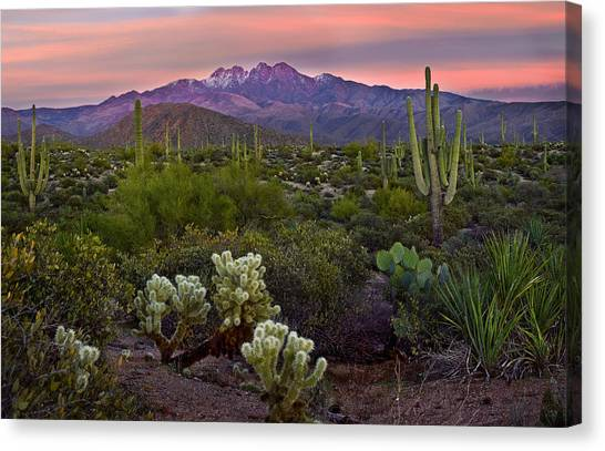 Sunsets Canvas Print - Four Peaks Sunset by Dave Dilli