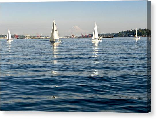 Four Sailboats Canvas Print by Tom Dowd