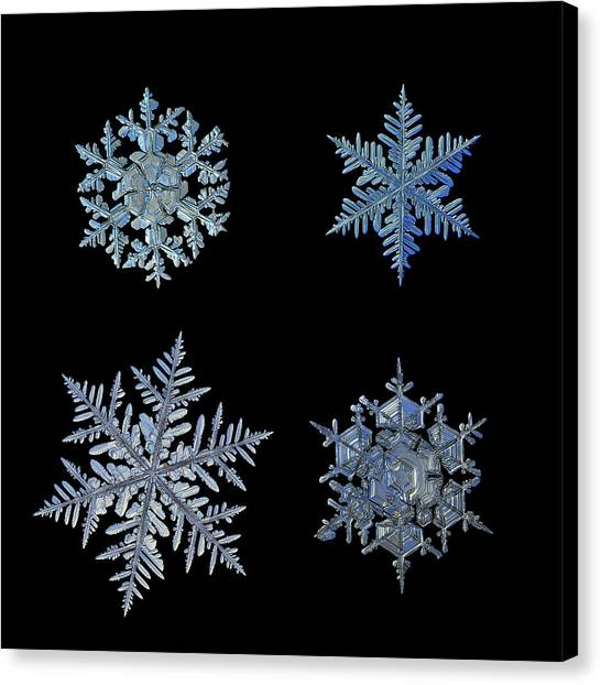 Canvas Print featuring the photograph Four Snowflakes On Black Background by Alexey Kljatov