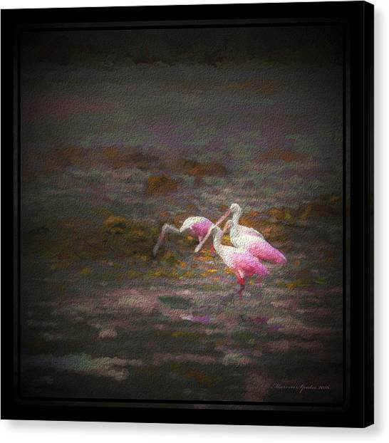 Spoonbills Canvas Print - Four Spoons On The Marsh by Marvin Spates