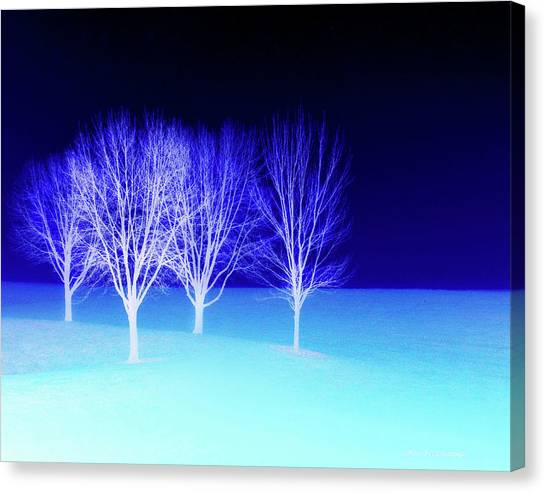Four Trees In Snow Canvas Print