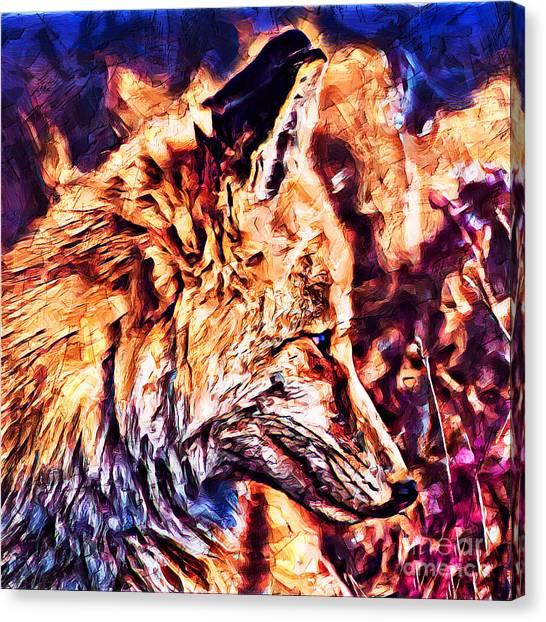 Fox 3 Canvas Print