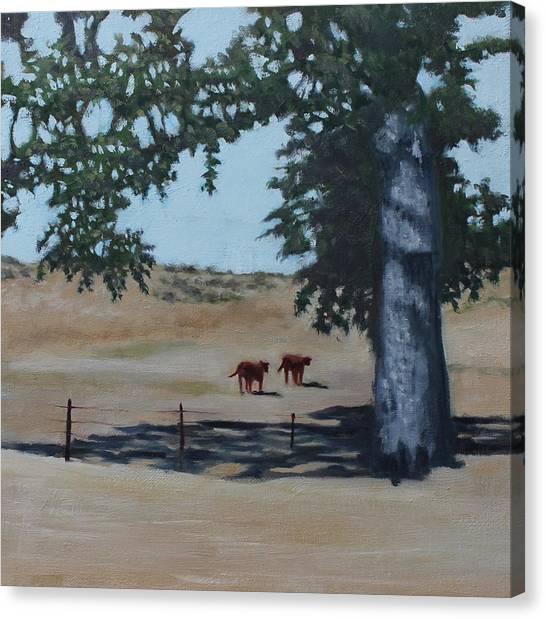 Fox Canyon Ranch Canvas Print