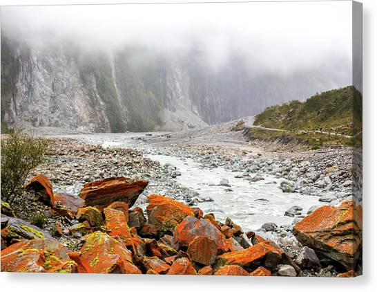 Fox Glacier Canvas Print - Fox Glacier Park- New Zealand by Cindi Alvarado