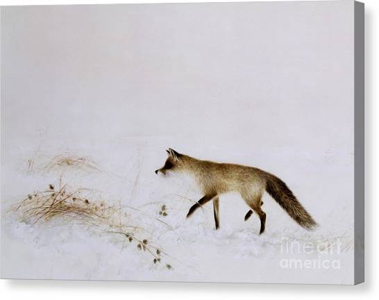 Foxes Canvas Print - Fox In Snow by Jane Neville