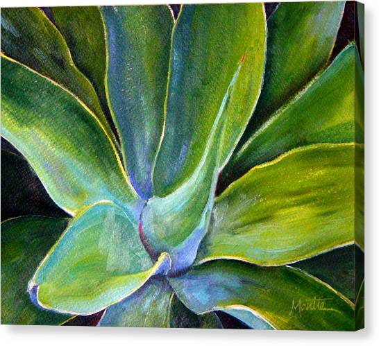 Fox Tail Agave 2 Canvas Print by Athena Mantle